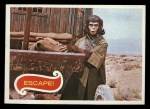 1969 Topps Planet of the Apes #37   Escape Front Thumbnail