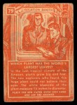 1957 Topps Isolation Booth #79   World's Largest Leaves Back Thumbnail