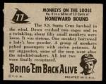 1950 Topps Bring Em Back Alive #77   Monkeys On The Loose Back Thumbnail