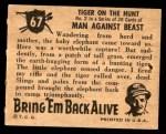 1950 Topps Bring Em Back Alive #67   Tiger On The Hunt Back Thumbnail