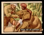 1950 Topps Bring Em Back Alive #65   Food For An Elephant Front Thumbnail