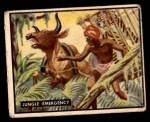 1950 Topps Bring Em Back Alive #100   Jungle Emergency Front Thumbnail