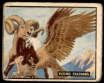 1950 Topps Bring Em Back Alive #22   Flying Feathers Front Thumbnail